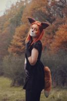 Fox 1 by Estelle-Photographie