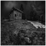 Black and Snow by JeRoenMurre
