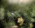 Resting Lion 2015 by nudagimo