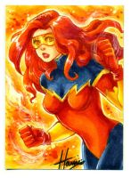 PSC Firestar by HanieMohd