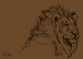 Lion sketch by WolfHowl10