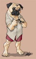 Pug :colored: by SergioCuriel