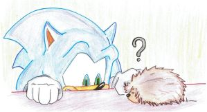 Sonic and Hedgehog by thepencilismightier