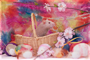 Happy Easter Hamster I by whensummerends