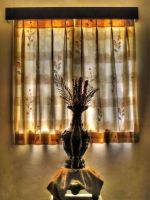 HDR - Painterly Vase by anshulsharma