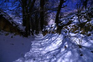 Winter in 'Root hole' gully No.3 by qaxtx