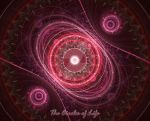 The Circles of Life - For Anj by LonesomeFaery