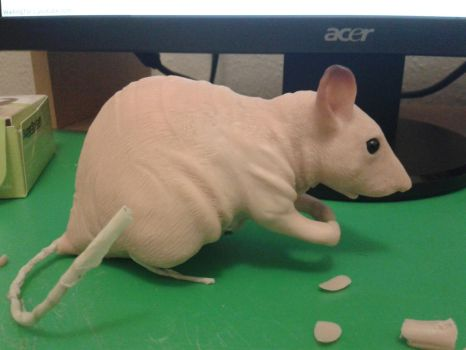 Rex Fancy Rat WIP by philosophyfox