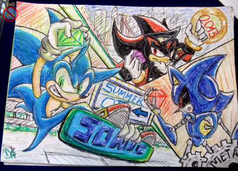 Summer of Sonic 2013 art contest entry by shadowhatesomochao