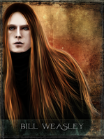 Bill Weasley - tarot series by Patilda