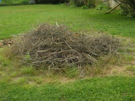Stick Pile Stock 3 by Orangen-Stock