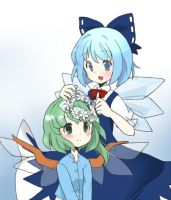 Cirno and Daiyousei by chocoblanc