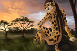 Serengeti Sunset by Damalynn by Lonewolfchan
