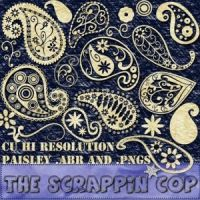 Funky Paisley Brushes by analeewon