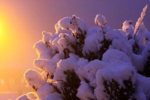 Snow Cumulus by melemel