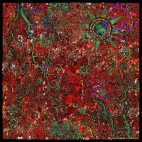 Ab09 Red Abstract by Xantipa2