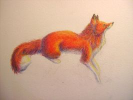 Red fox on my wall by Joava