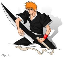 Completed Ichigo by ryuomaru