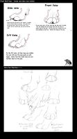 Black Tail's Paw Tutorial by BlackTailwolf