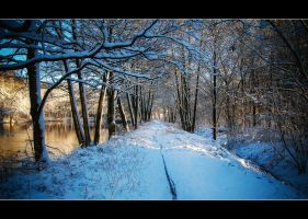 Winter Wonderland 2 by calimer00