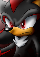 shadow the hedgehog by FANTASY-WORKS-JMBD