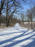 623 - snow path by WolfC-Stock
