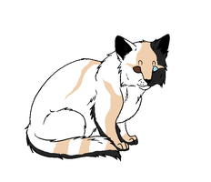 Cat adopt 2 CLOSED by petshop101