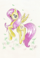 Fluttershy by LoneBlueRose