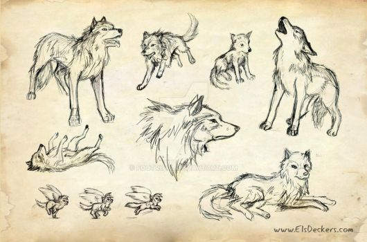 wolf background by Footroya