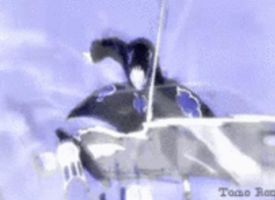 Sasuke (Akatsuki) Vs Killerbee animated Gif by Angie988