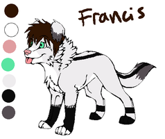 Quick ref Francis by DarkChocaholic