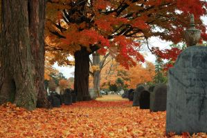 Autumn Cemetery II by lionfeathers