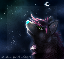 A Wish for the Stars -REMAKE- by Karaikou