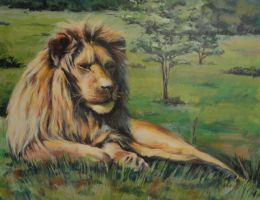A lion by kenpaint