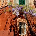 Trastevere colours by minotauro9