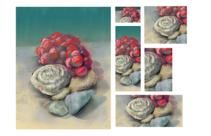 Some Rocks with Some Grapes by MarkHartman