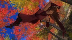 DEAD OR ALIVE 5 Last Round Phase4 55 by aponyan