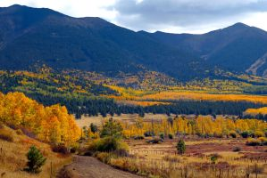 Flagstaff fall 7854 by mammothhunter