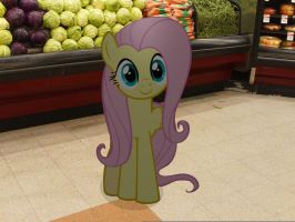 My Little Fluttershy: At the grocery store by JudgementMaster
