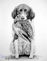 Commissioned dog portrait by Tinesdierportretten