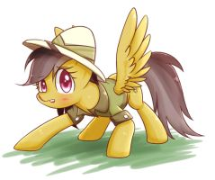 daring do by joycall3