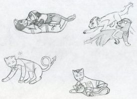 MORE new cat doodles by GoldFox20