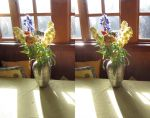Stereograph - Flower Vase by alanbecker