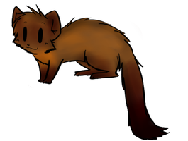 Why that is a Pine Marten. by FoxLover12