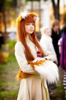 Horo-gif by andrewhitc