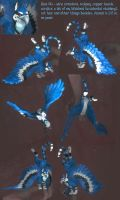 Bluejay of Happiness by wiltekirra