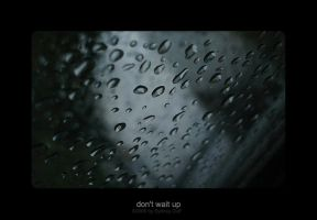 don't wait up by bodegas