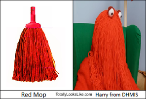 Harry and Red Mop Look-a-Like by PokemonPikmin573