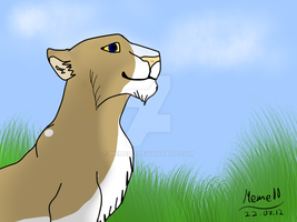 :') my first lion .. by Meme00
