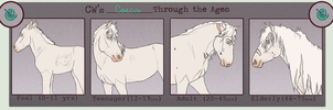 CW | Caecus | Through the ages by PaleMount